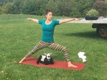 goat yoga Nicole